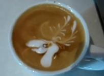 Moose in coffee 2